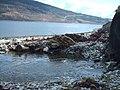 Allt Dubh Burn flowing onto shore at Loch Striven - geograph.org.uk - 765039.jpg