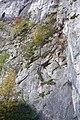 Alpenvereinssteig Einstieg.JPG