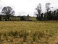Altnapaste Townland - geograph.org.uk - 1770295.jpg