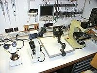 Amateur Microscopy Laboratory - Microscopes - (1).jpg