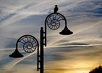 Ammonite lamp post at dusk, Lyme Regis.JPG