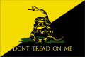 Anarcho-Gadsden flag.svg