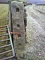 Ancient Gatepost - geograph.org.uk - 635547.jpg