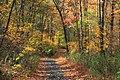 Appalachian Trail- Totts Gap to Mount Minsi (2) (10355544225).jpg