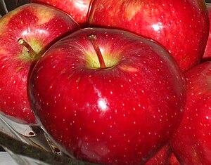 English: Red Apples فارسی: سیب سرخ