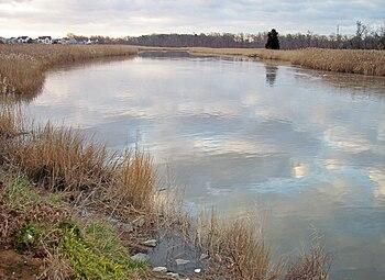 The Appoquinimink River in Odessa, Delaware, a...