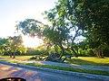 Areas verdes en el Boluevar Bahía, Chetumal. - panoramio.jpg