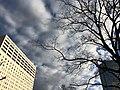 Ariake,Tokyo (23781655040).jpg