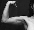 Artsy biceps.jpg