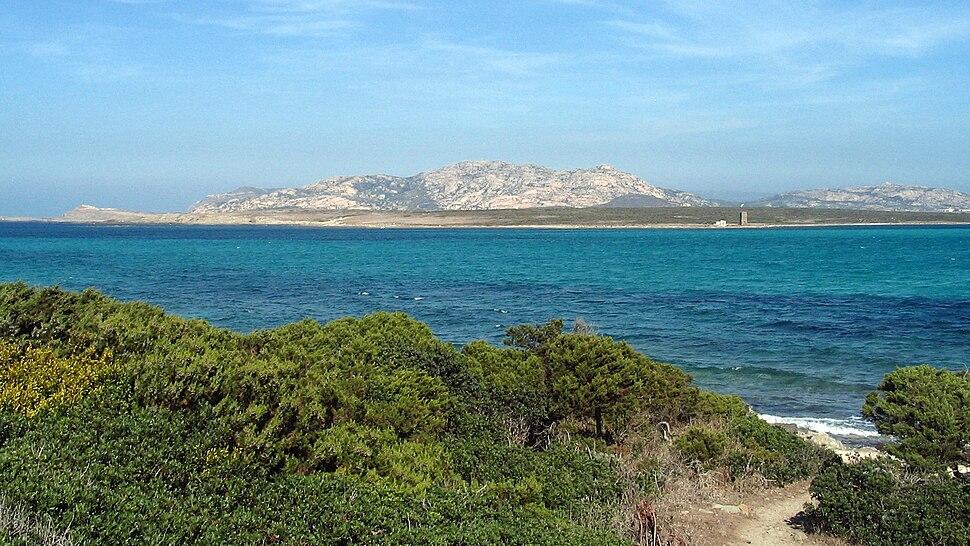 Asinara-Island01