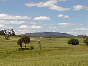 New England (New South Wales) - Mount Duval in New England