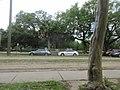 Audubon Park New Orleans 7 April 2020 - 17.jpg