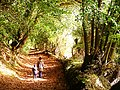 Autumn in the Quantocks - panoramio.jpg