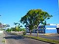 Av. San Salvador, Chetumal. - panoramio.jpg