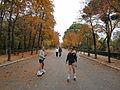 Avenida de Cuba, Madrid's Parque del Retiro (6382415523).jpg