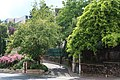 Avenue Franklin-Roosevelt Suresnes 8.jpg
