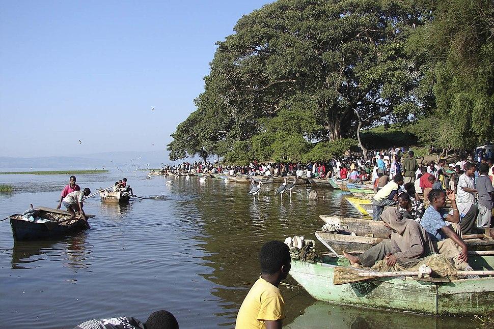 Awasa fish market