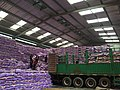 Bags of rice are unloaded from truck to pile in a Dakar warehouse.jpg