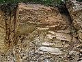 Baraboo Quartzite (upper Paleoproterozoic, ~1.7 Ga; Rt. 12 roadcut, South Range, Baraboo Ranges, Wisconsin, USA) 4 (18620507538).jpg