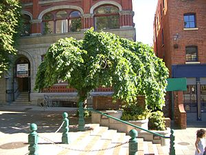Downtown Victoria - Bastion Square
