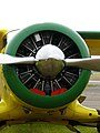 Beechcraft Staggerwing 4.jpg