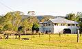 Belli Park Sunshine Coast Queensland Australia (15).jpg
