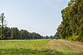Bergen-Belsen concentration camp memorial - the former camp's main street - 05.jpg