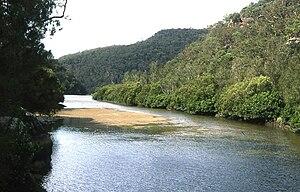 Berowra Creek - Confluence of the Berowra and Calna creeks