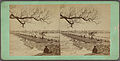 Beverly Bridge, from Robert N. Dennis collection of stereoscopic views.jpg