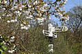 Birds Green, Essex, England - fingerpost at T-junction with garden shrub.jpg