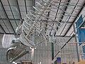 Blue Whale skeleton CAS rib cage 2.JPG