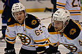 Blues vs. Bruins-9203 (6831891586).jpg