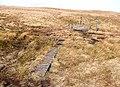 Boardwalk and gate at Coquet Head - geograph.org.uk - 1221556.jpg