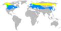 Bombycillagarrulusmap2.png