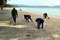 Boracay cleanup by residents.jpg