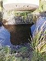 Boundary stone on Mynydd Maen - geograph.org.uk - 652198.jpg