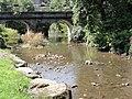 Bousignies-sur-Roc (Nord, Fr) pont sur le Roc.jpg