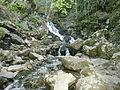Boyana river 01.JPG