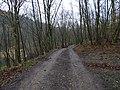 Bratřínov, údolí Kocáby, cesta k Fafkovu mlýnu.jpg