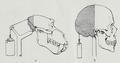 Braus 1921 316.png