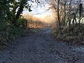 Bridleway descending from Adam's Wood - geograph.org.uk - 115042.jpg