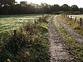 Bridleway to Norleigh Mill - geograph.org.uk - 581291.jpg