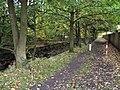 Brookside Path - geograph.org.uk - 72277.jpg