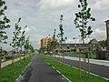 Brugge Kolenkaai - 27067 - onroerenderfgoed.jpg