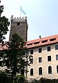 Burg Falkenfels.JPG