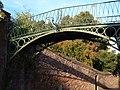 Burnet Patch footbridge, Exeter - geograph.org.uk - 248966.jpg