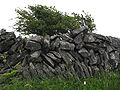 Burren fence made of rock.jpg