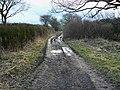 Byway to Yatesbury - geograph.org.uk - 1189813.jpg