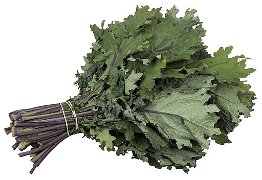 CSA-Red-Russian-Kale