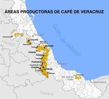 Cafe de Veracruz MAPA b.pdf